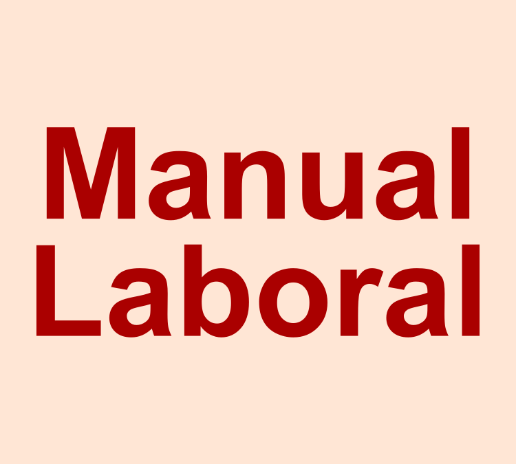 Manual Laboral 2019